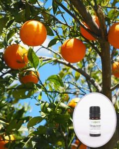 Apelsinų saldžiųjų eterinis aliejus