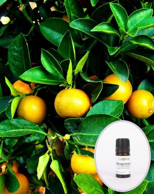 Mandarinų geltonųjų eterinis aliejus