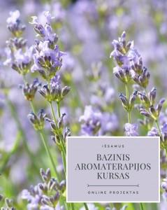Bazinis aromaterapijos kursas