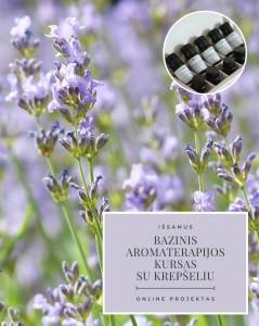 Bazinis aromaterapijos kursas su krepšeliu